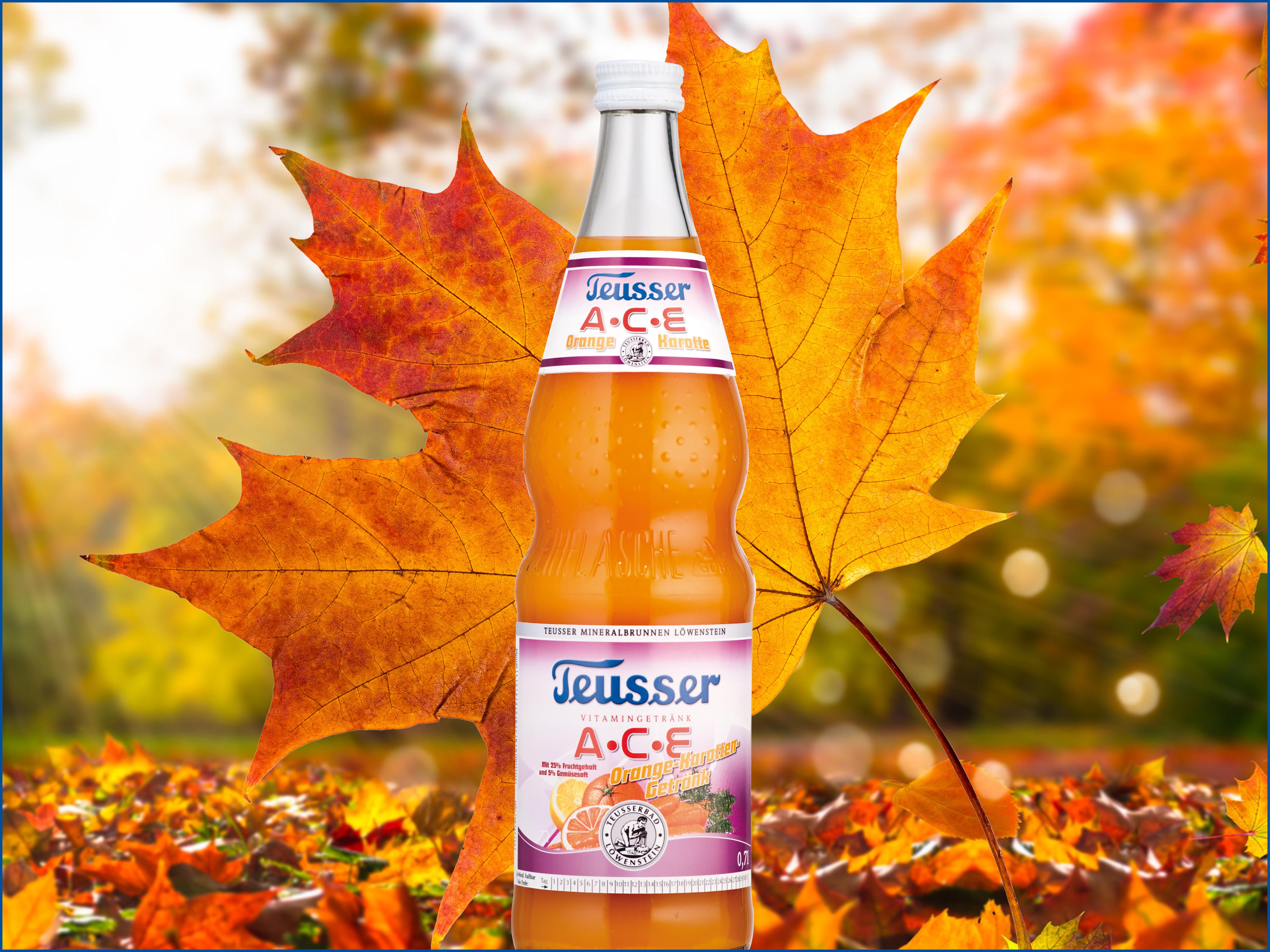Herbst heißt Vitamin-Zeit